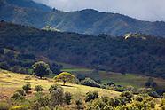 Waianea Mountains