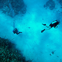 North Side Crystal Clear, Chinese Wall, Grand Cayman