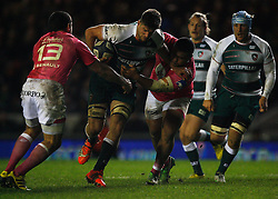 - Mandatory byline: Jack Phillips / JMP - 07966386802 - 13/11/15 - RUGBY - Welford Road, Leicester, Leicestershire - Leicester Tigers v Stade Francais - European Rugby Champions Cup Pool 4