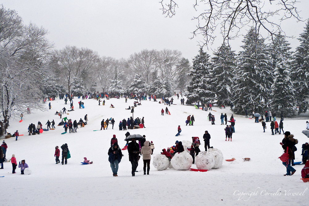 Sledding on Dog Hill in Central Park