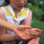 Children releasing a butterfly in a garden