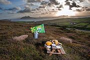 Fresh food from then wilds of kerry, ireland.<br /> Picture by Don MacMonagle -macmonagle.com