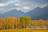 67545-09704 Fall color and Grand Teton Mountain Range from Blacktail Falls Overlook, Grand Teton National Park, WY