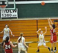 Elyria vs Avon Lake girls varsity basketball on February 20, 2012 at Elyria Catholic High School.