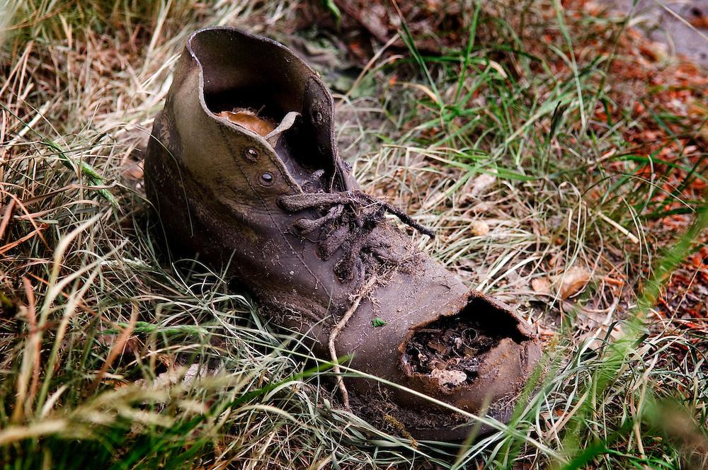 Nederland, Velsen-zuid, 15 mei 2006..Oude, half vergane schoen in de berm in het gras..tand des tijds, oud, versleten, vergankelijkheid..Foto (c) Michiel Wijnbergh..old shoe, ephemerality