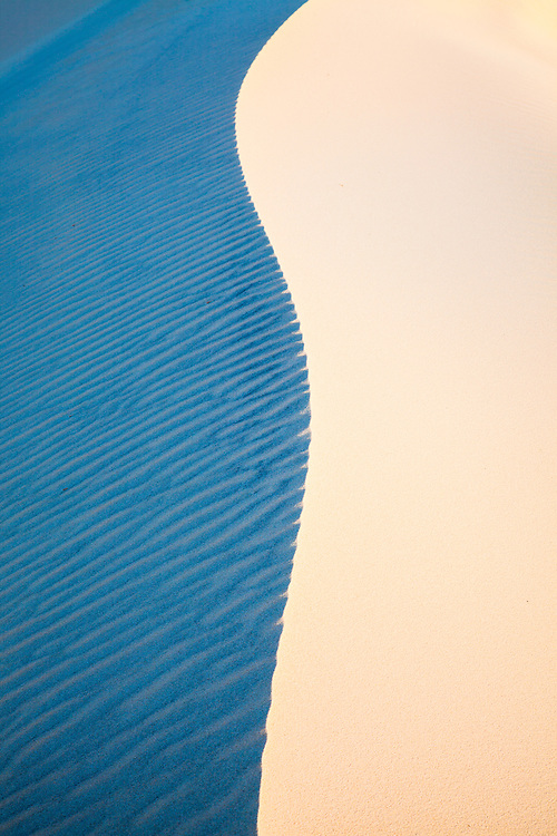 Texture, line and form of a sand dune on Moreton Island lit by the afternoon light.