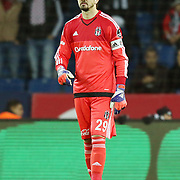 Besiktas's goalkeeper Tolga Zengin during their Turkish Super League soccer match Besiktas between Akhisar Belediye Genclik ve Spor at the Basaksehir Fatih Terim arena in Istanbul Turkey on Sunday, 29 November 2015. Photo by Kurtulus YILMAZ/TURKPIX
