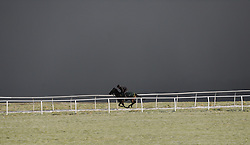 © Licensed to London News Pictures. 22/03/2014<br /> <br /> Middleham, North Yorkshire<br /> <br /> Race horses exercise at first light on the horse racing gallops in Middleham, North Yorkshire. Race horses have been trained in Middleham for over 200 years using the extensive gallops on the high moor. There are currently 15 stables based around the small Yorkshire village.<br /> <br /> Photo credit : Ian Forsyth/LNP