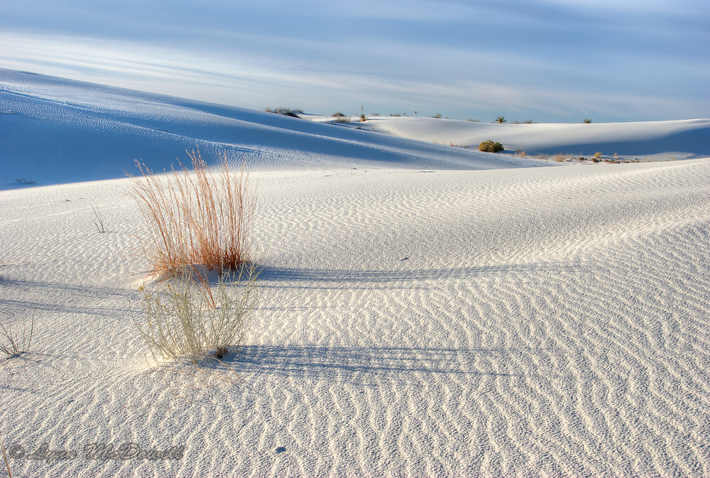 As the the sun is first rising on White Sands National Monument, long soft shadows are created across the dunes and highlighting the pattern in the sand, a HDR image
