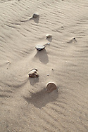 The wind has rippled the surface of the sandy beach, exposing a collection of small stones.