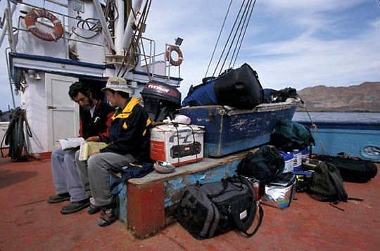 Mexico,  Baja, Captain taLakeing to guide on Abalone fishermen's boat going to San Benito Island.