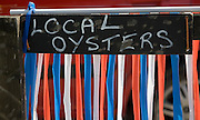 Sign for local oysters, Mersea Island, Essex, England