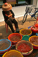 Tai O Market Fishmonger - Lantau Island is the largest island in Hong Kong.  Originally a sleepy fishing village, in recent years has been increasingly popular thanks to its market and rural charm. Tai O is a favorite Hong Kong escape for its quiet and rural charm.