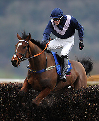 Jackthejourneyman ridden by Jack Reveley jumps the last during the Bell Inn At Watchet Handicap Chase (Class 5) (5YO plus) - Photo mandatory by-line: Harry Trump/JMP - Mobile: 07966 386802 - 09/03/15 - SPORT - Equestrian - Horse Racing - Taunton Racing - Taunton Racecourse, Somerset, England.
