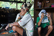 Generations, an old resistance fighter wearing a Penan headress and his grandson with an improvised newspaper hat. The Penan native people are learning to live a sedentary lifestyle which includes living in wooden houses, farming and fishing. They were traditionally nomadic hunter-gatherers. These days they have become forcibly settled as their hunting grounds have been largely destroyed by logging concessions and palm-oil plantations.<br /><br />There are only a few, difficult to find, scarce communities of semi-nomadic Penan nowadays, who live like of those of old, hidden away deep in the tropical forest, hunter-gathering, wearing loin cloth 'chawats', hunting wild boar with blowpipes and poison arrows, and extracting sago-root flour, their staple carbohydrate, by hand.<br /><br />Borneo native peoples and their rainforest habitat revisited two decades later: 1989/1991 and 2012/2014/2015. <br /> <br /> Sarawak's primary rainforests have been systematically logged over decades, threatening the sustainable lifestyle of its indigenous peoples who relied on nomadic hunter-gathering and rotational slash & burn cultivation of small areas of forest to survive. Now only a few areas of pristine rainforest remain; for the Dayaks and Penan this spells disaster, a rapidly disappearing way of life, forced re-settlement, many becoming wage-slaves. Large and medium size tree trunks have been sawn down and dragged out by bulldozers, leaving destruction in their midst, and for the most part a primary rainforest ecosystem beyond repair. Nowadays palm oil plantations and hydro-electric dam projects cover hundreds of thousands of hectares of what was the world's oldest rainforest ecosystem which had some of the highest rates of flora and fauna endemism, species found there and nowhere else on Earth, and this deforestation has done irreparable ecological damage to that region