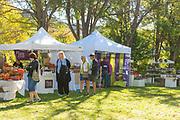 People enjoying art tents, Ritter Island, Thousand Springs Art Festival, Hagerman, Idaho.