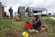 Rökning av lax vid en fiskestuga utanför Nome. <br /> I luften flyger mygg. På grund av de varmare temperaturerna måste laxen kontrolleras extra noga så att insekter inte lägger ägg i fisken.  <br /> Alaska, USA<br /> <br /> Fotograf: Christina Sjögren<br /> <br /> Photographer: Christina Sjogren<br /> Copyright 2018, All Rights Reserved