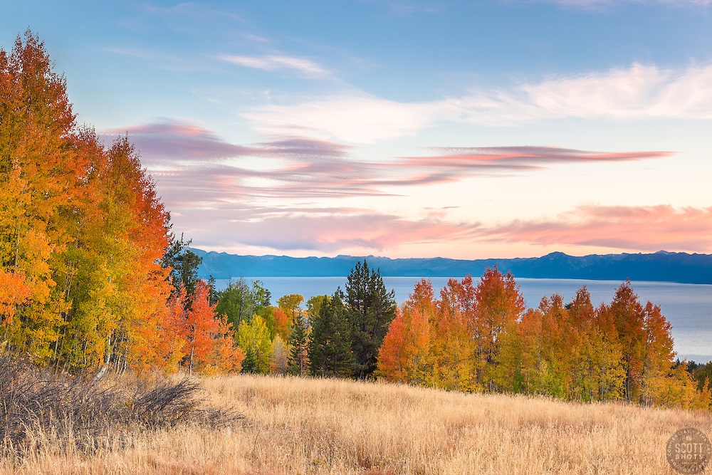 """""""Aspens Above Lake Tahoe 3"""" - Photograph of yellow, orange, red, and green fall colored aspens above a blue Lake Tahoe, taken at sunset."""