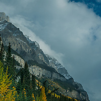 Peaks of the Canadian Rockies tower above fall colors in the Bow River Valley.