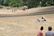 Neederland, Nijmegen, 28-7-2018Door de aanhoudende droogte hebben mens en natuur het moeilijk . Doordat regenval uitblijft worden de waterbuffers kleiner en moet het waterpeil van o.a. het IJsselmeer verhoogd worden om aan de vraag, behoefte te voldoen . Vergeeld par, stadspark Kronenburgerpark .Foto: Flip Franssen