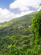 View of Casa Flamboyant, a bed and breakfast in the El Yunque National Forest, north of Naguabo, Puerto Rico.