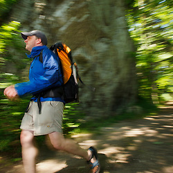 A man hiking on a woodland trail at Bartholomew's Cobble in Sheffield, Massachusetts.
