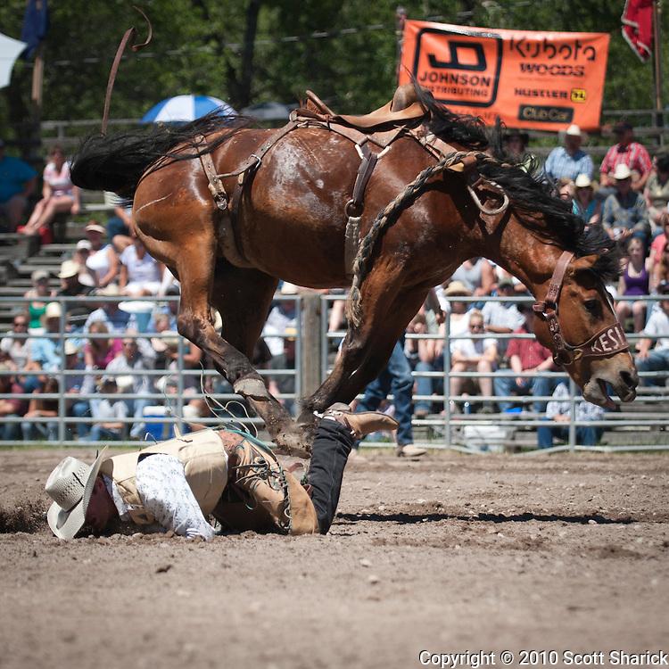 Another reason..... Missoula Photographer, Missoula Photographers, Montana Pictures, Montana Photos, Photos of Montana