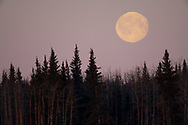 The Wolf Moon, or the Ice Moon, or the Snow Moon, it was the first full moon of the decade.