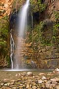 Ein Gedi sweet water springs, in the  judean desert, Israel, the lower waterfall in Wadi David