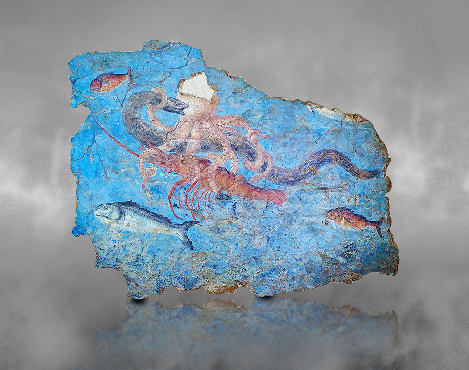 Roman Fresco with a fight scene between octopus, lobster and eel, 125-150 AD. (mosaico fauna marina da porto fluviale di san paolo), museo nazionale romano ( National Roman Museum), Rome, Italy. inv. 463Z4.  <br /> <br /> Excavated from the Porto di San Paolo near the Via Portuense, these frescoes decorated the thermal area of a suburban Roman Villa. The reconstructed fresco fragments, depict a group of three fighting animals: an octopus (octopus vulgaris) clutches a moray eel (muraena helena) and a lobster (palinurus vulgaris) in its tentacles; around them mud mullets (mullus barbatus) and rock mullets (mullus surmuletus) try to escape. Incriptions on the frescoes suggesy that the villa owner was from Alexandria where this style of nautical mosaic and fresco  decorations is found. .<br /> <br /> If you prefer to buy from our ALAMY PHOTO LIBRARY  Collection visit : https://www.alamy.com/portfolio/paul-williams-funkystock/national-roman-museum-rome-fresco.html<br /> <br /> Visit our ROMAN ART & HISTORIC SITES PHOTO COLLECTIONS for more photos to download or buy as wall art prints https://funkystock.photoshelter.com/gallery-collection/The-Romans-Art-Artefacts-Antiquities-Historic-Sites-Pictures-Images/C0000r2uLJJo9_s0