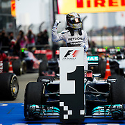 Formula 1 - Chinese Grand Prix 2014