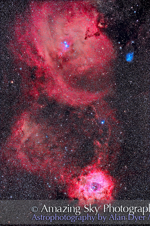This is a portrait of the main glowing nebulas amid star clusters in Monoceros, the Unicorn. <br /><br />The main nebula at bottom is the Rosette Nebula, aka NGC 2237-9/45 surrounding the star cluster NGC 2244. But in this long exposure streams of nebulas extend north to connect to a large region of diffuse nebulosity around the Christmas Tree Cluster, NGC 2264, with the main nebula at top catalogued as Sharpless 2-273 and containing a region of bright blue reflection nebulosity. Just below that blue nebula is the dark, conical Cone Nebula. Just below it is the tiny (on this scale) Hubble's Variable Nebula, NGC 2261, a small bright triangular patch. The blue reflection nebula at upper right is IC 2169, surrounded by other smaller patches of reflection nebulosity including NGC 2245 and IC 446. The V-shaped dark nebula at top is LDN 1603. The star cluster just below that is Trumpler 5. <br /><br />This is a stack of 8 x 12-minute exposures at ISO 3200 through an Optolong L-Enhance narrow-band nebula filter, blended with a stack of 8 x 8-minute exposures without a filter (for more natural star colors and the blue reflection nebulas) at ISO 800. All were with the Canon EOS Ra camera through the f/5 51mm William Optics RedCat astrograph with a Starizona filter drawer. Autoguiding was with the Lacerta MGEN3 autoguider which applied a dithering shift between each frame to help cancel out thermal noise when stacking. No darks or LENR were used here on this mild winter night at -5° C or so. <br /><br />All stacking, alignment and blending was in Adobe Photoshop 2021. Luminosity masks (DM2, D and M) applied with Lumenzia helped bring out the faint nebulosity.