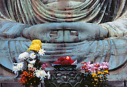 Fruit and flower displays are placed as offerings before the Great Buddha at Kamakura, Japan.