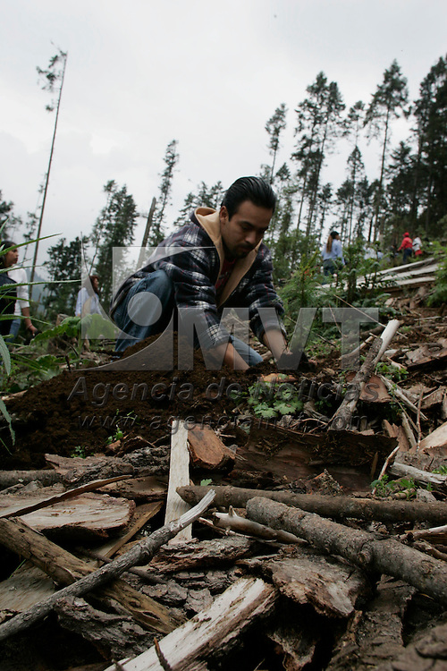 Ocuilan, Mex.- Comuneros del municipio de Ocuilan, reforestan el bosque devastado por taladores clandestinos en la comunidad El Llano de la Piedra, durante el inicio del Programa de Reforestación 2007. Agencia MVT / Javier Rodriguez. (DIGITAL)<br /> <br /> <br /> <br /> <br /> <br /> <br /> <br /> NO ARCHIVAR - NO ARCHIVE