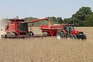 08: FARMS COMBINING SOYBEAN FIELD