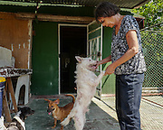 Nora García with Milagro (Miracle), a dog rescued from the trash by a garbage collector.