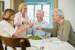 Friends clinking glasses with sparkling wine, smiling