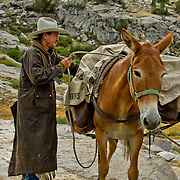"""As """"packers"""", wranglers work hard to ensure theat the loads on their pack mules are secure and stable, but not too much for the animal to carry. Horse and mule pack trains, like something straight out of the Old West, still ply the steep trails of the High Sierra in King's Canyon National Park."""