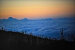 18-10-2008 REPORTAGE: KILIMANJARO CHALLENGE 2008: TANZANIA <br /> Opweg naar Shira plateau op 3850 meter. De Kilimanjaro Challenge van de BvdGf.<br /> ©2008-FotoHoogendoorn.nl