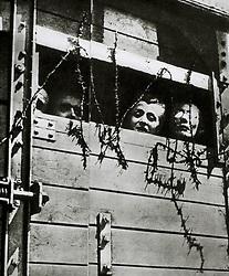 Jan. 1, 1940 - Prisoners Being Transported to Auschwitz, Poland, 1944 (Credit Image: © Glasshouse/ZUMAPRESS.com)