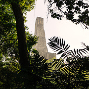 The top of Temple 5 pokes through the jungle treetops in the Tikal Maya ruins in northern Guatemala, now enclosed in the Tikal National Park.