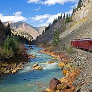 The Durango & Silverton Narrow Gauge Railroad travels 45 miles each way along the Animas River from Durango to Silverton, an old mining town high in the San Juan Mountains. The Animas River is one of the last free-flowing rivers in the western United States and cuts through some of Colorado's most striking canyon scenery. Closer to Silverton, you can see the rocks along the sides of the river are discolored yellow and orange. This is from contaminants of the mining operations there.