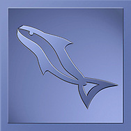 A Fish Logo Or Icon In Square Format, A Digital Illustration With Clipping Path Or Vector Path Included