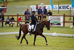 Van Asselberghs Philippe, BEL, Esprit<br /> European Championship Eventing Landelijke Ruiters - Tongeren 2017<br /> © Hippo Foto - Dirk Caremans<br /> 28/07/2017