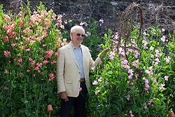 Roger Parsons at the sweet pea trial at Parham House with Lathyrus odoratus 'Maloy' and Lathyrus odoratus 'Gwendoline'