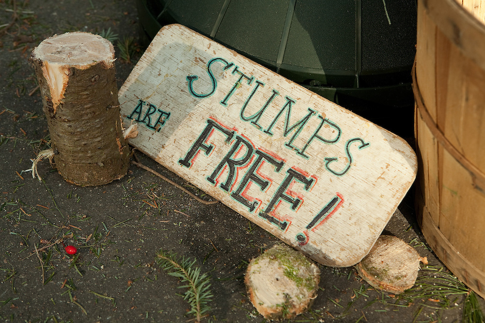 """""""Stumps are free!"""" reads a Chrstmas tree-seller's sign at the greenmarket in Brooklyn's Grand Army Plaza."""