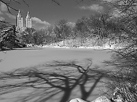 The towers of the San Remo seen over The Lake in Central Park