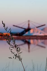 Il complesso produttivo delle saline è situato nel comune italiano di Margherita di Savoia (nome dato dagli abitanti in onore alla regina d'Italia che molto si adoperò nei confronti dei salinieri) nella provincia di Barletta-Andria-Trani in Puglia. Sono le più grandi d'Europa e le seconde nel mondo, in grado di produrre circa la metà del sale marino nazionale (500.000 di tonnellate annue).All'interno dei suoi bacini si sono insediate popolazioni di uccelli migratori e non, divenuti stanziali quali il fenicottero rosa, airone cenerino, garzetta, avocetta, cavaliere d'Italia, chiurlo, chiurlotello, fischione, volpoca..Vista della struttura centrale dello stabilimento con cumuli di sale che si riflettono sulle acque dei bacini circostanti.