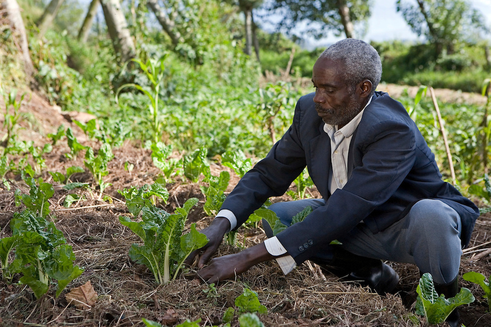 Erasmus Nsabimana during a week's residential training with Kulika in Uganda on sustainable organic farming. He is looking at the mulching process that has been used on this vegetable patch.