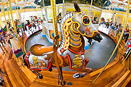 Nunley's Carousel, with horse wearing armour seen from above platform in extreme perspective, at Museum Row, Garden City, New York, USA, on August 7, 2012. Taken with180 degree fish eye lens